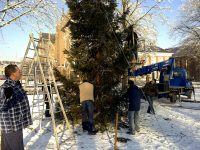 kerstboom 2009